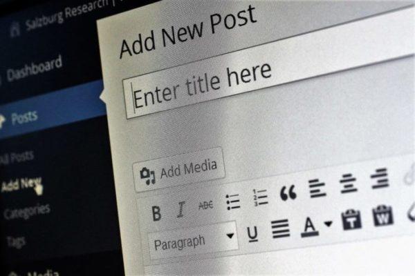 rédacteur-web-contenu