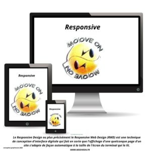 responsive V2 moove on